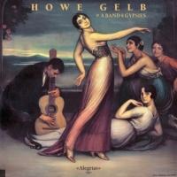 Howe Gelb en concert