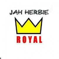 Jah Herbie en concert