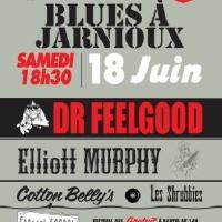 Nuit du Blues de Jarnioux
