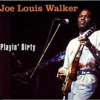 Joe Louis Walker en concert