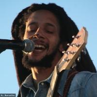 Julian Marley en concert