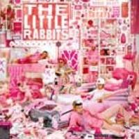 The Little Rabbits en concert