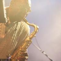 Manu Dibango en concert