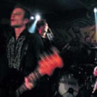 Neurotic Swingers en concert