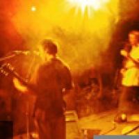 NFZ en concert