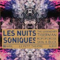 Festival Les Nuits Soniques