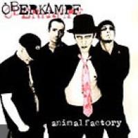 Oberkampf en concert