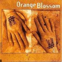 Orange Blossom en concert