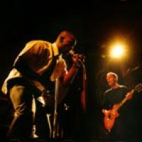Oxbow en concert