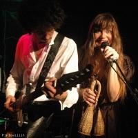 Phoebe Killdeer and the Short Straws en concert