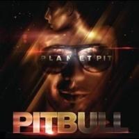 Pitbull en concert