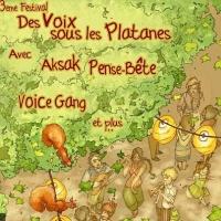 Festival Voix sous les Platanes
