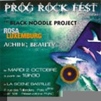 Prog Rock Fest 2007