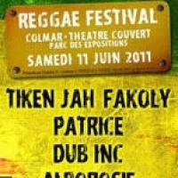 Reggae Festival (68)