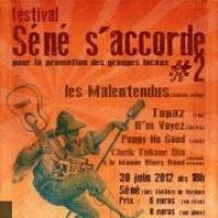 Festival Sene S'accorde