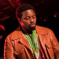 Sly Johnson en concert