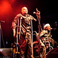 Staff Benda Bilili en concert