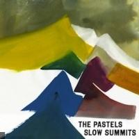 The Pastels en concert