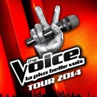 The Voice en concert