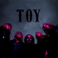 Toy en concert