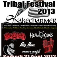 Tribal Festival
