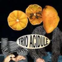 Trio Acidulé en concert