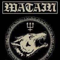 Watain en concert