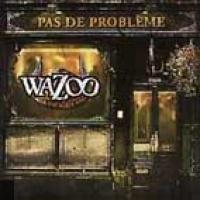 Wazoo en concert